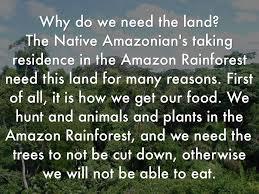 amazon rainforest native plants raft ss by caroline cundy