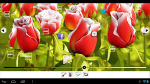 Home Design 3d For Android My Flower 3d Live Wallpaper Android Apps On Google Play