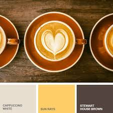 185 best color inspiration from mycolortopia com images on