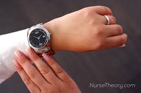 adpie u2013 nursing process steps