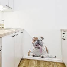 humphrey the english bull dog printed wall decal english bulldog wall decal
