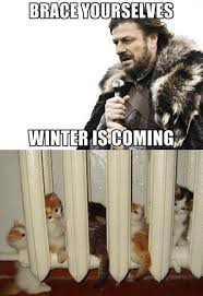 Meme Brace Yourself - brace yourselves winter is coming