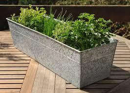 buy galvanised window trough delivery by waitrose garden in