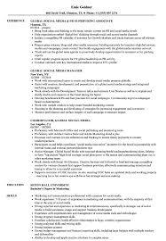 social media resume global social media resume sles velvet