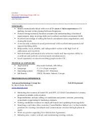 Best Font Size For Resumes by It Sales Resume Example Sales Director Resume Profesional Profile