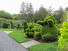 Elephant Topiary The Daily Rant Sculptures That Literally Live And Breathe