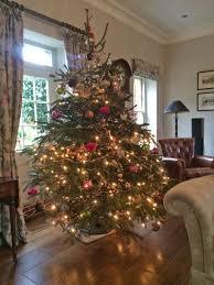 order your christmas trees hilltop farm producehilltop farm produce