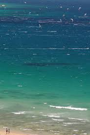 155 best tarifa in spain images on pinterest spain cadiz and places