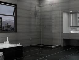 Shower Doors Reviews Bathroom 55x72 Dreamline Hinged Frameless Shower Door Exclusive