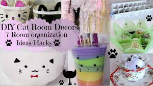 Diy Bedroom Organization by Diy Cat Room Decors And 7 Room Organization Ideas Hacks Youtube