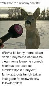 Funny Deer Memes - yeh had torun for my deer life drama lol funny meme clean dank
