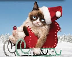 Meme Generator Grumpy Cat - grump cat meme generator 100 images grumpy cat meme generator