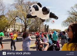 National Cherry Blossom Festival by Panda Bear Balloon Float At National Cherry Blossom Festival Stock