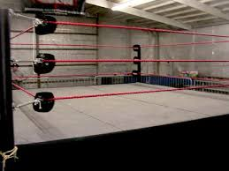 backyard wrestling ring for sale cheap yep i would definitely buy a wrestling ring some day