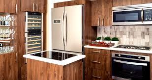 Ikea Kitchen Designs Photo Gallery Rv Kitchen Design Conexaowebmix Com