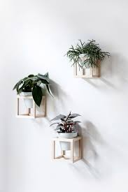 cube wall planters decor pinterest planters walls and plants
