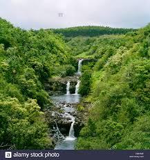 World Botanical Gardens Umauma Falls World Tropical Botanical Gardens Big Island Hawaii