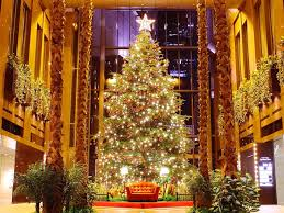 31 best christmas trees images on pinterest christmas time