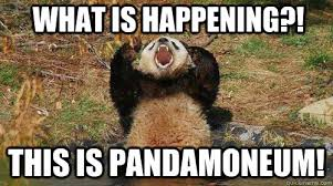Whats Going On Meme - what is happening this is pandamoneum yelling panda quickmeme