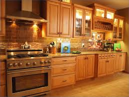 Kitchen Cabinets Brands Fresh High End Kitchen Cabinets Home And Furniture Design Idea
