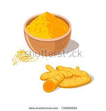 curcuma cuisine turmeric root powder bowl curcuma spice เวกเตอร สต อก 739996882