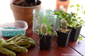 Window Sill Herb Garden Designs Diy Windowsill Herb Garden Simple Garden Gift