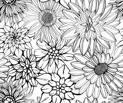 hand drawn floral wallpaper with set of different flowers royalty