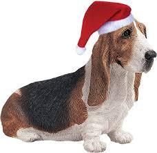1014 best basset hounds fieles compañeros images on