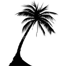 palm tree designs tattoosgallerydesigns com polyvore