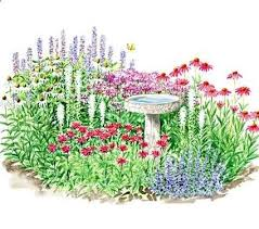 best 25 full sun plants ideas on pinterest full sun landscaping