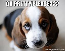 Puppy Face Meme - sad puppy face i miss you