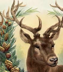 free vintage christmas image deer vintage christmas images