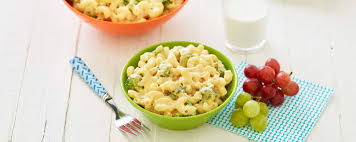 broc mac u0026 cheese recipe hidden valley