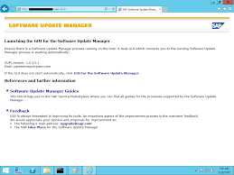 sap sum tool software update manager sap basis