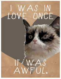 Grumpy Cat Meme Valentines Day - cat meme valentines by lazy geometry i was in love once i flickr