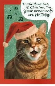Christmas Grumpy Cat Meme - christmas tree christmas tree dur ornaments are history