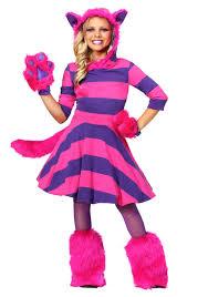 Kitty Cat Halloween Costumes Kids by Cheshire Cat Halloween Costume Alice In Wonderland Cheshire Cat