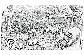 free coloring page of the rainforest miracle rainforest coloring pages to print fre 9885 unknown