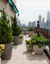 urban jungle u2013 how to turn your terrace into an oasis