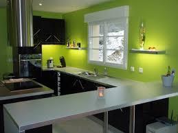 divin decoration de cuisine vert anis id es design ext rieur chambre