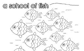 fish collective nouns colouring pages