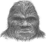 sasquatch that can u0027t be killed with bullets and disappear in a