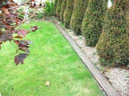 Timber Garden Edging Ideas Best Lawn Edging Ideas How To Edge A Garden Bed With