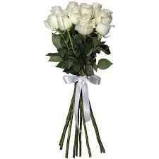 White Roses In A Vase Buy Flowers One Dozen White Roses No Vase Roses In World