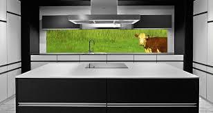 glaspaneele küche verleihen sie ihrer küche eine individuelle note mit diesen