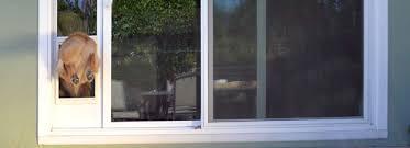 doggie door in glass door pet doors archives for blogs of pet welfare u0026 wellness