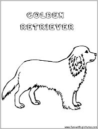 golden retriever puppies coloring pages glum