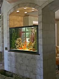 home design wonderful aquascape aquarium designs e2 80 94