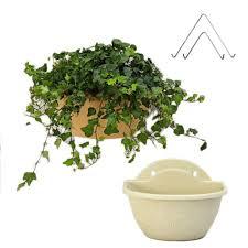 online get cheap large plastic planter aliexpress com alibaba group