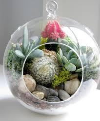 life love larson look for less challenge diy succulent u0026 cactus
